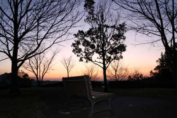 2010滝ヶ谷公園2