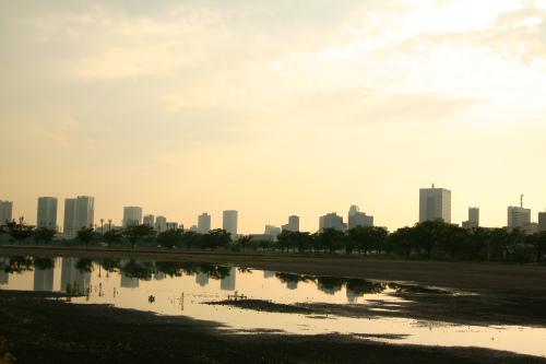 harumi1.jpg