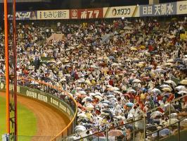 08.8.28 雨の市民球場