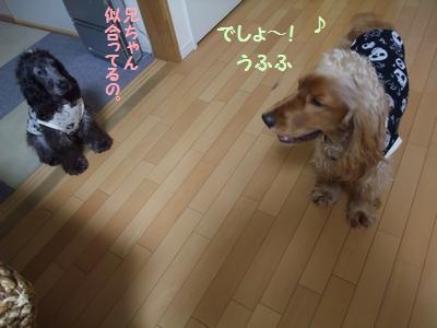 DSCF4289.jpg