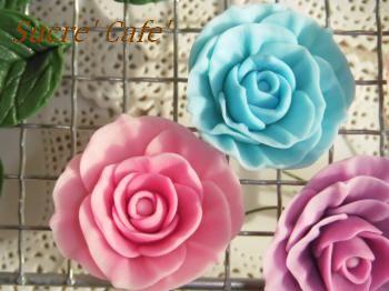 グラデ薔薇3