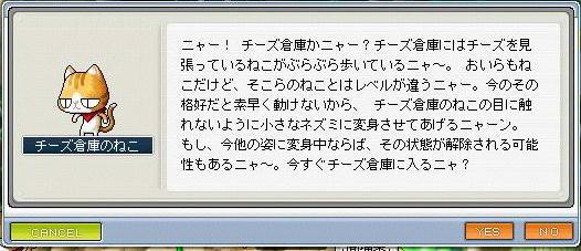 200804301.jpeg