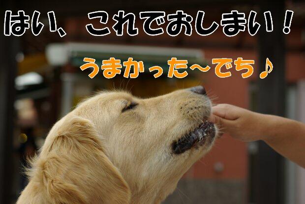 軽井沢11