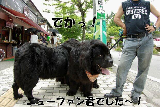 旧軽井沢銀座3