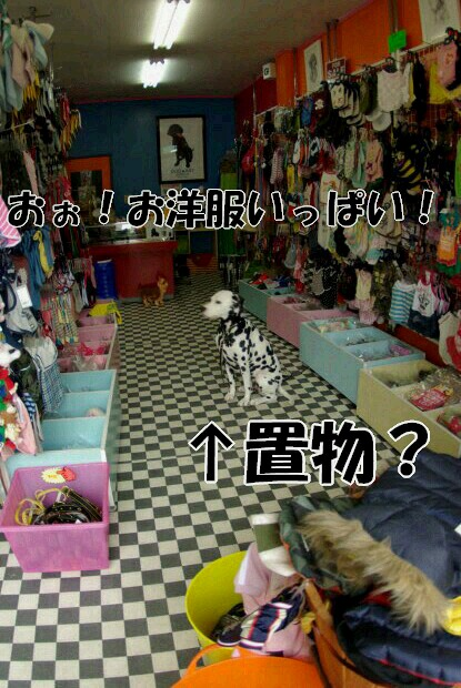 旧軽井沢銀座4