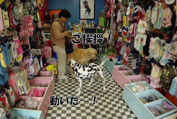 旧軽井沢銀座5