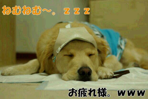 旧軽井沢銀座22