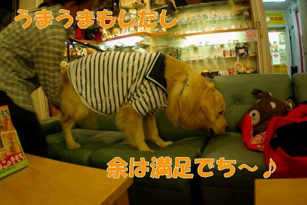 10夕食後_くま2