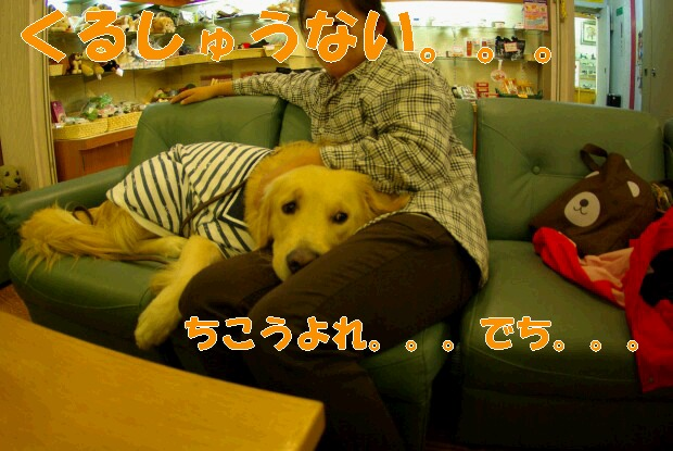 11夕食後_くま3