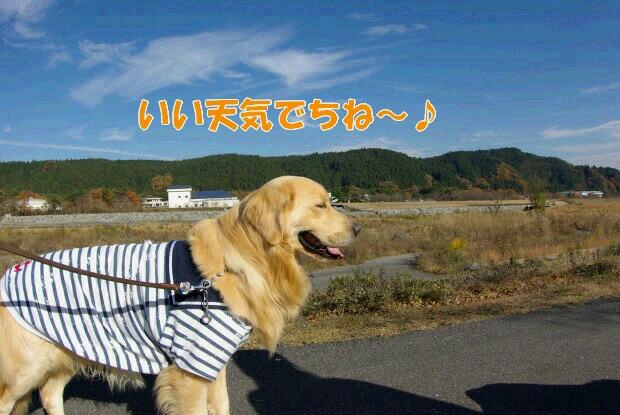 01お散歩