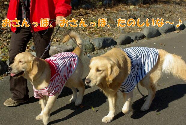 02お散歩