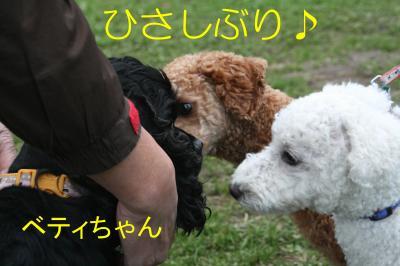 IMG_4723_convert_20091208173820.jpg