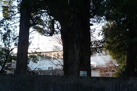 旧赤星邸④