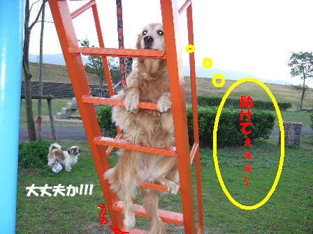 20071104101656.jpg