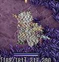 20060709130053.jpg