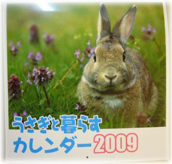 2008082502.jpg
