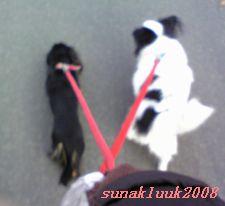 20081210