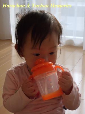 ゆうちゃん(1歳3ヶ月)
