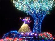 白雪姫とアップルツリー☆