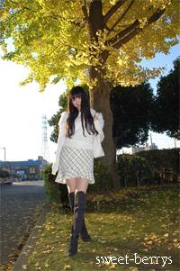銀杏の葉がキラキラ・・☆