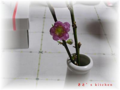 小さな桃の花
