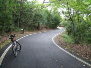 森林サイ道0810