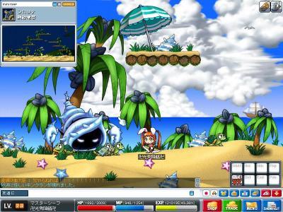 Maple0000_convert_20090327205945.jpg