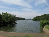 ときわ湖畔北キャンプ場-2