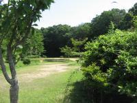 ときわ湖畔北キャンプ場-3
