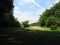 ときわ湖畔北キャンプ場-6