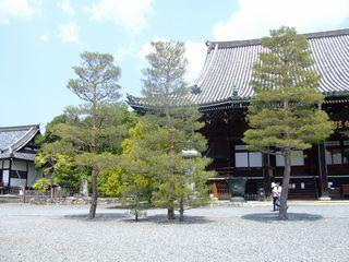 seiryouji3.jpg