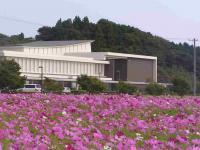 kosumosu-5.jpg