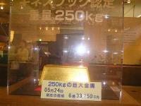 250kgの金塊