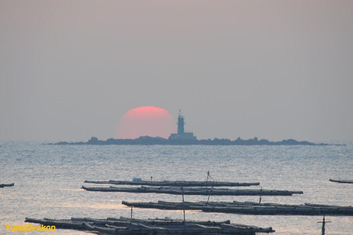 師楽(錦海湾)08-10-03-01