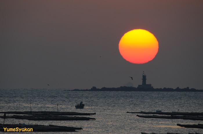 師楽(錦海湾)08-10-03-05
