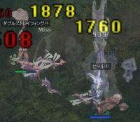 20071206 亀1