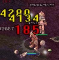 20071206 亀2