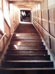 52風呂への階段下から写真の写真