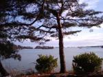 松島その6