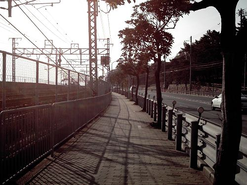 20051211001959.jpg