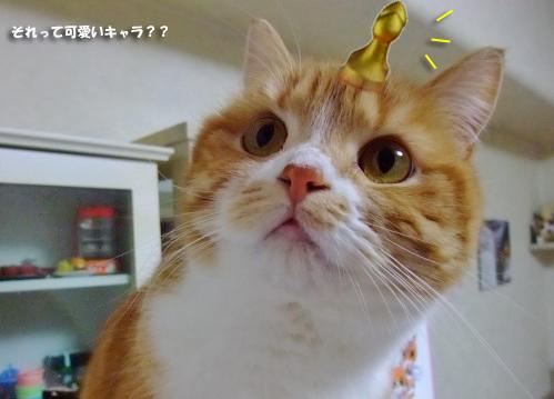 ぷーすか317のコピー
