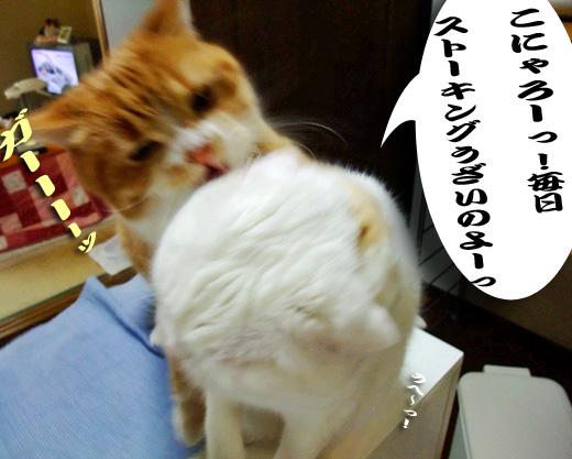 ぷぷの攻撃のコピー