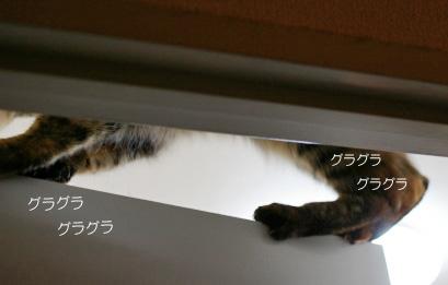 kirara otiのコピー