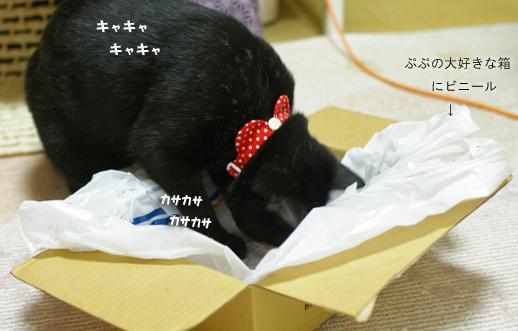 yorokobのコピー