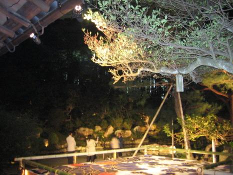2005110905.jpg