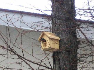 巣箱 その2