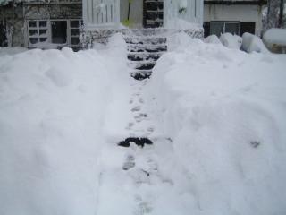 ただ今雪かき中