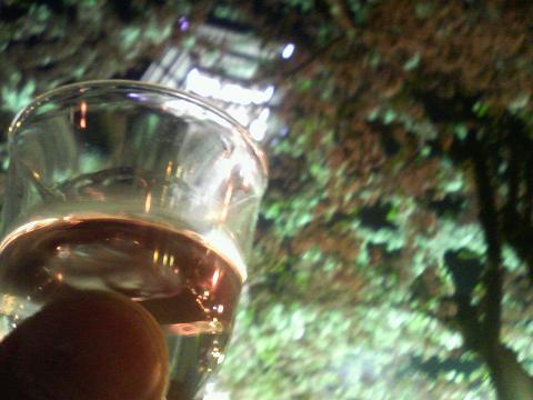 夜桜と五稜郭とお酒