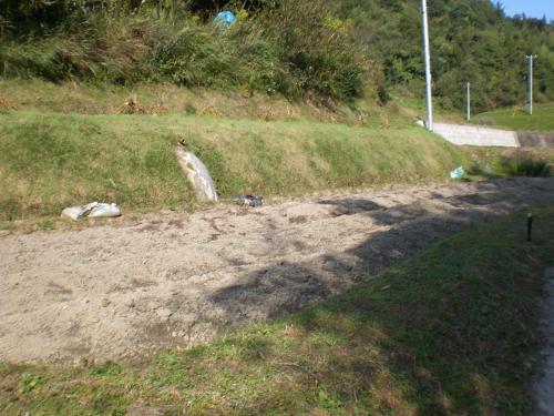 花崗岩の土壌1