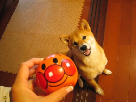anpan-man-ball.jpg
